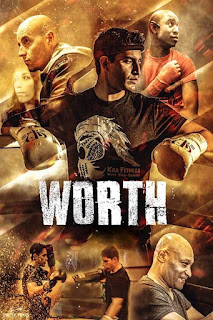 MOVIE :Worth (2018)