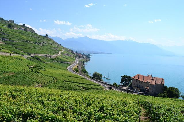 terrazas del Lavaux Suiza