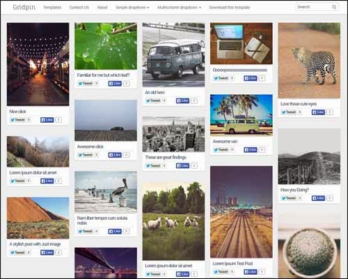 Grid Pin Responsive Masonry Photography Free Blogger Template
