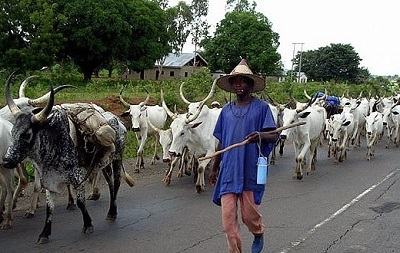 Fulani Herdsmen Attack Benue Again...See the Damage Caused