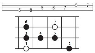 Bermain Bass Dengan Scale Blues