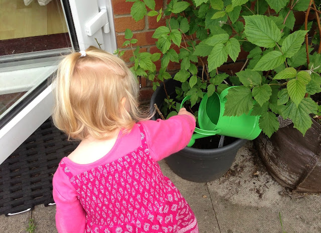 How to make the most of a small garden, get your children to water your fruit pots
