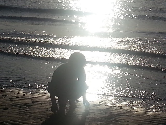 Silhouette of a child picking stones from the shore with sunset behind.