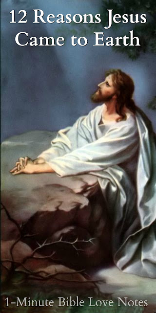 12 Reasons Jesus Came, Jesus came to earth