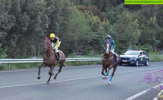 Breña Alta acoge este sábado las semifinales del Campeonato Insular de Carreras de Caballos en velocidad y distancia