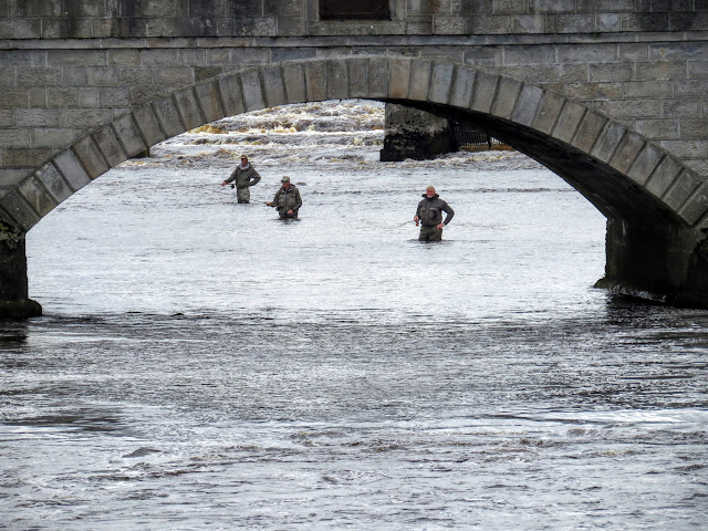 Fisherman in the river at Ballina in Northern County Mayo, Ireland