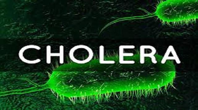 Cholera Symptoms, Prevention and Treatment (video)