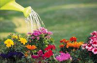 Is Your Soul a Well-Watered Garden?