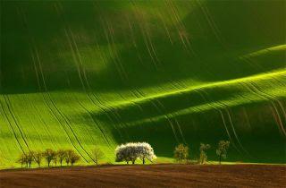 beautiful landscape photography 6