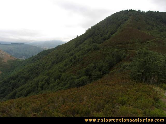 Ruta Bosques de Moal: Desde el mirador de Montecín, camino al collado Monco