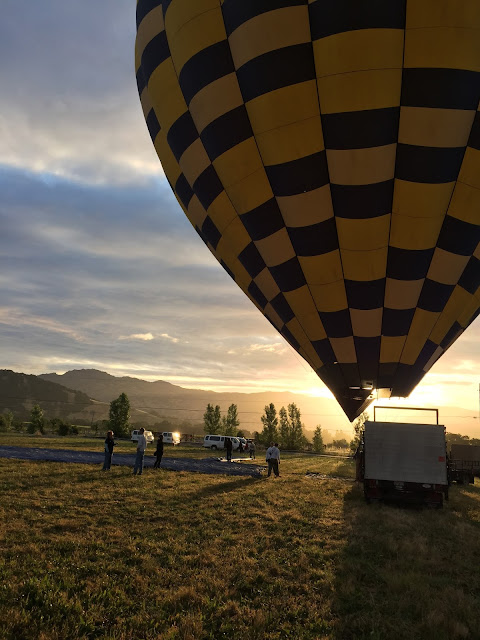 Hot Air Balloon in Napa, California