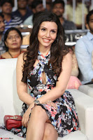 Kyra Dutta in a Deep neck Small Dress at Shamanthakamani pre release function ~  Exclusive 035.JPG