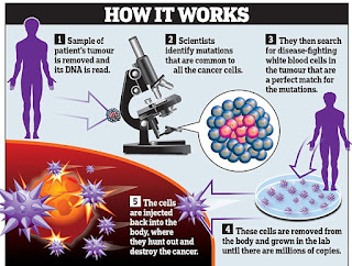 Stem Cell - How It Works