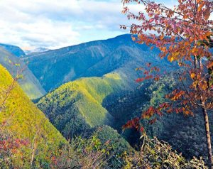 Bolivia: Parque Nacional Cotapata (ANMI)