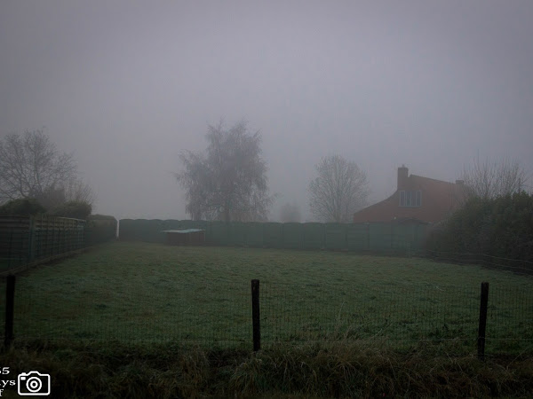 Mijn 365daysofphotography-project | week#1