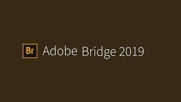 Hướng dẫn cài đặt Adobe Bridge CC 2019 Full Active mới nhất