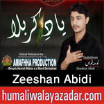http://www.humaliwalayazadar.com/2016/09/zeeshan-abidi-nohay-2017.html