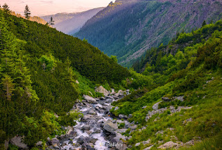 Rapid stream in mountains at sunrise