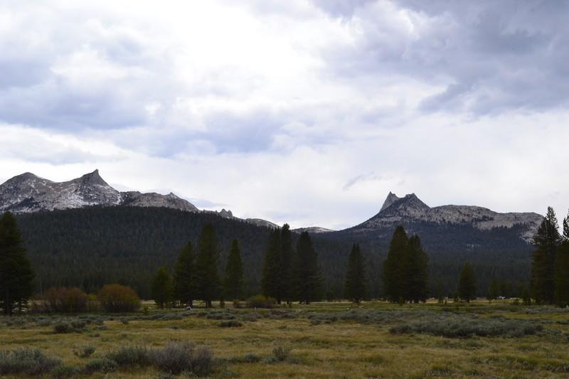 parc, californie, yosemtie, Tuolumne Meadows
