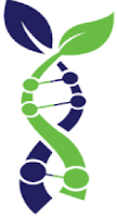 BIONYME logo image