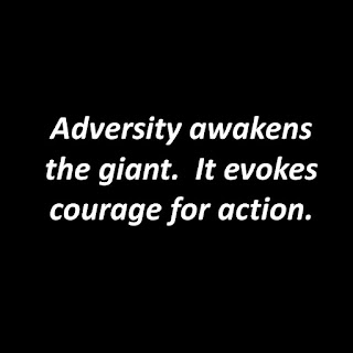 Courage In Adversity  Letters