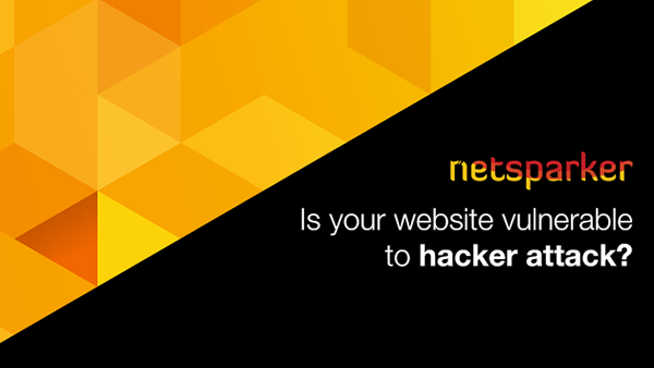 Netsparker:لاكتشاف التغراث الامنية في المواقع على شبكة الانترنت