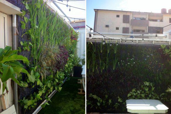 G nesis emprendimiento ecol gico promueve la jardiner a for Estudiar jardineria
