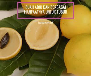 buah abiu