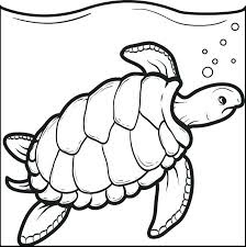 Wonderfully Green Turtle Printable Coloring Pages