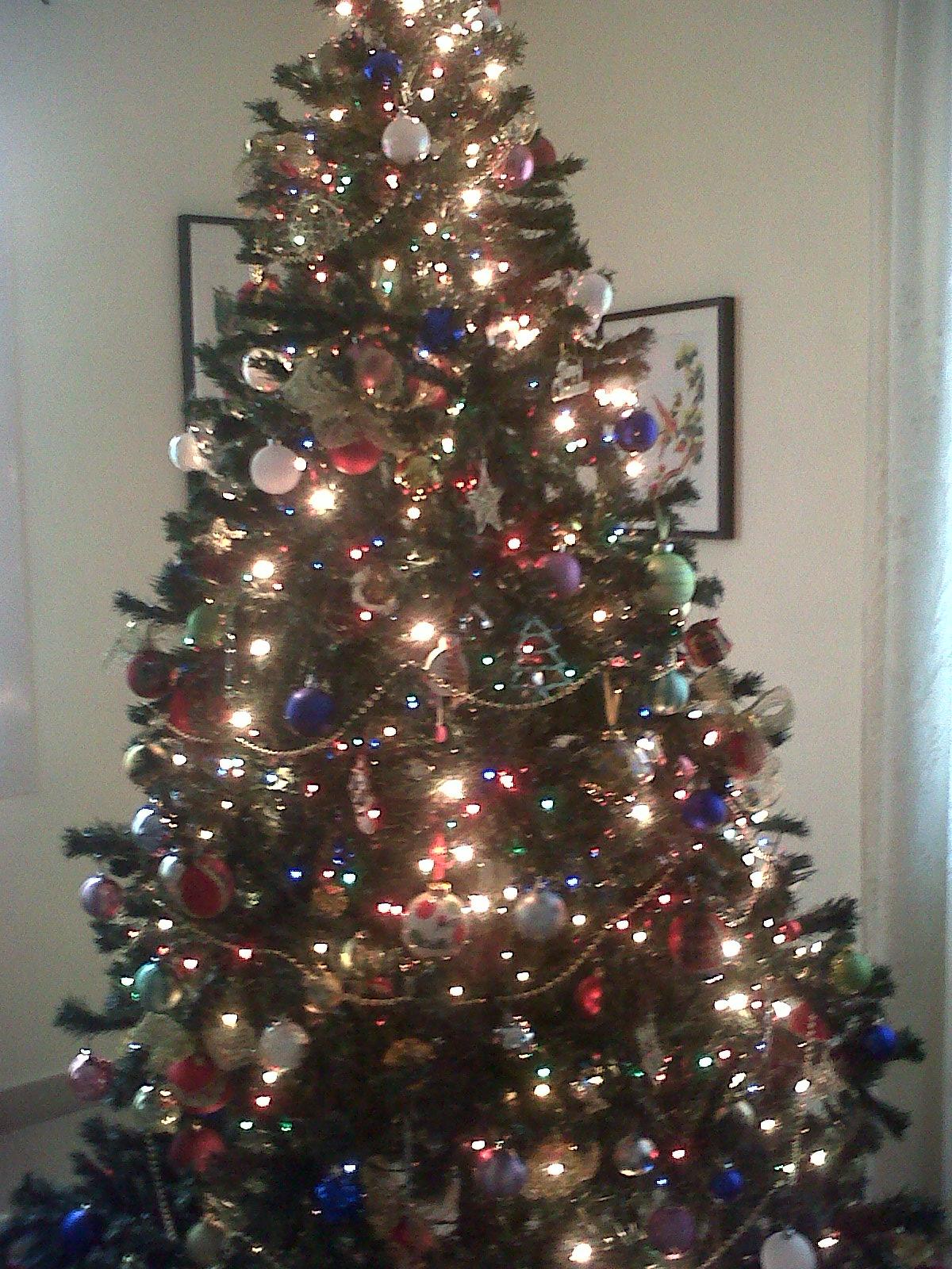 Our Beautiful Christmas Tree