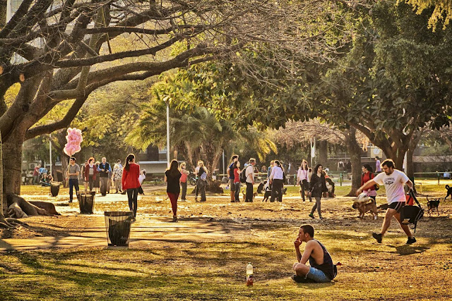 En medio del bullicio del parque un hombre esta sentado