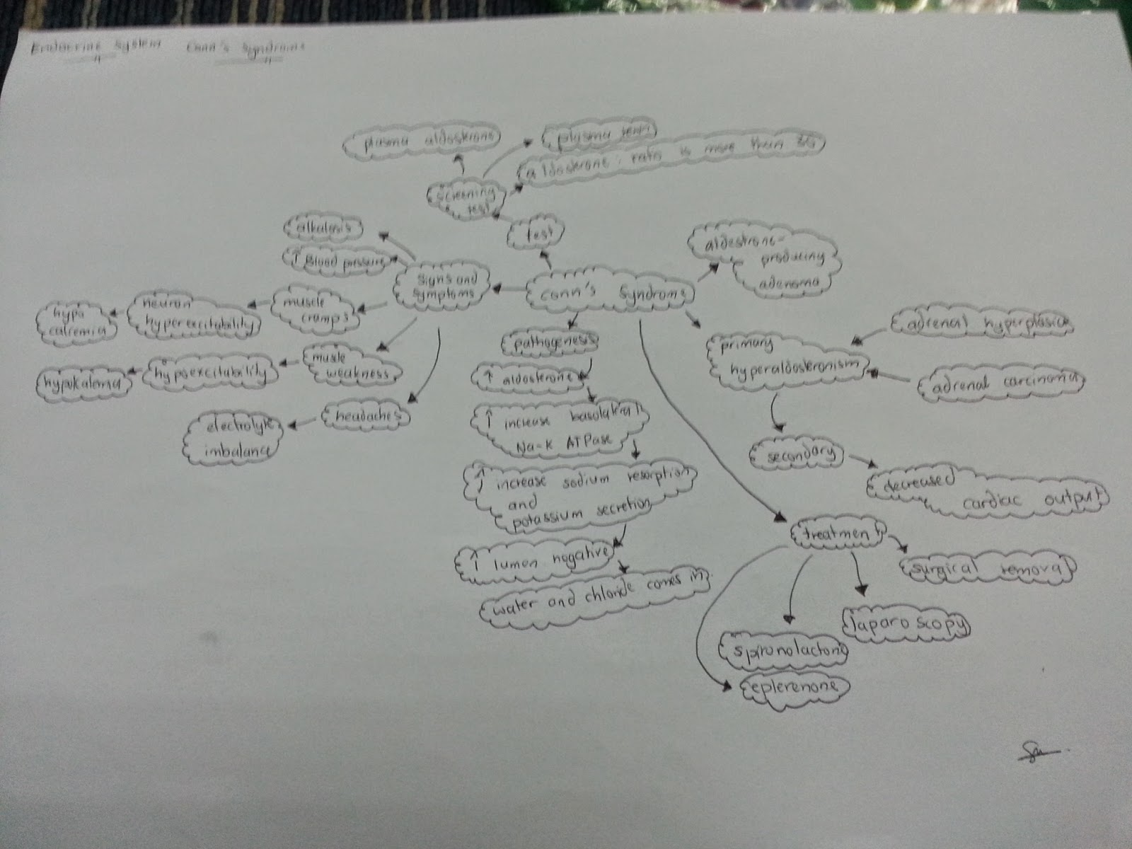 Medical Concept Maps Endocrine System