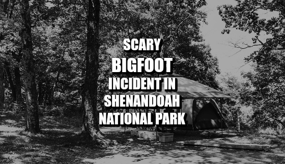 Scary Bigfoot Incident in Shenandoah National Park