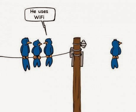 wifi funny cartoon bird hanging in mid air off telegrapg pole
