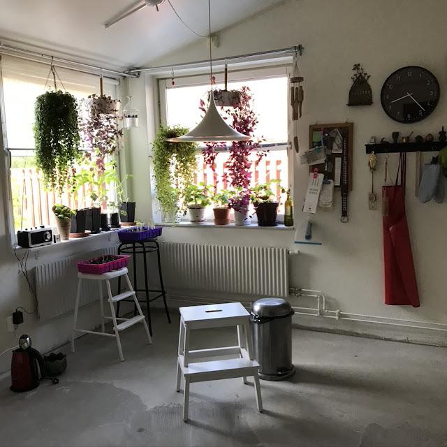 köksgolv, kitchenfloor
