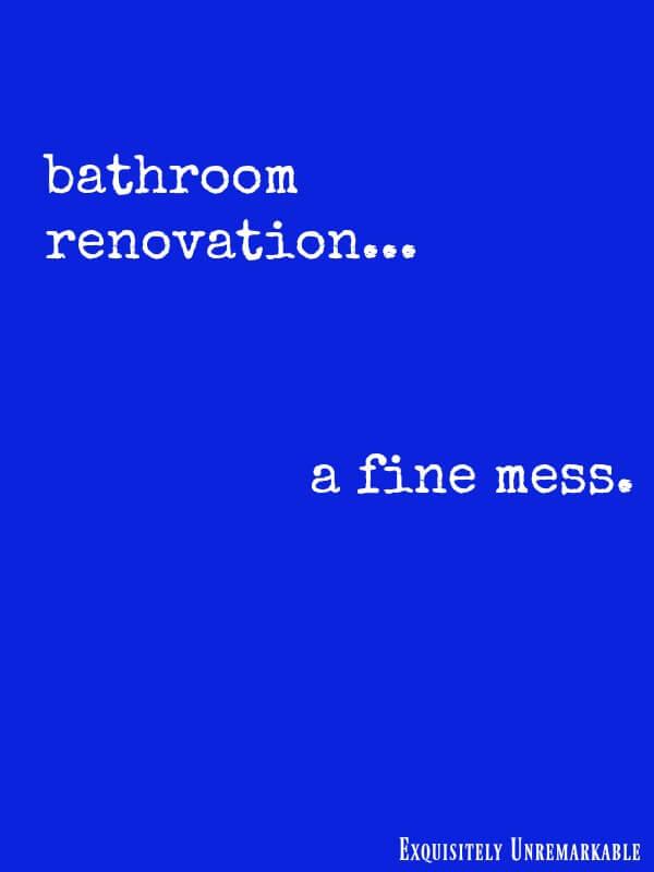 Bathroom Renovation A Fine Mess