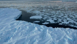 Why sea ice cover around Antarctica is rising