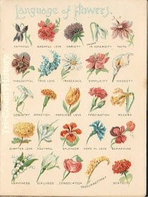 The Common Flower Names May Vary