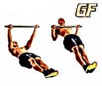 latihan otot punggung inverted row