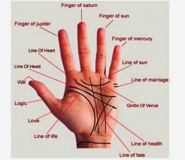 Palmistry for money in Hindi