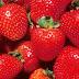 10 amazing health benefits of strawberry
