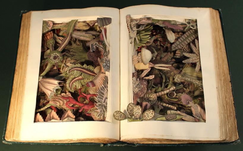 Arte  3D con libros viejos reciclados.