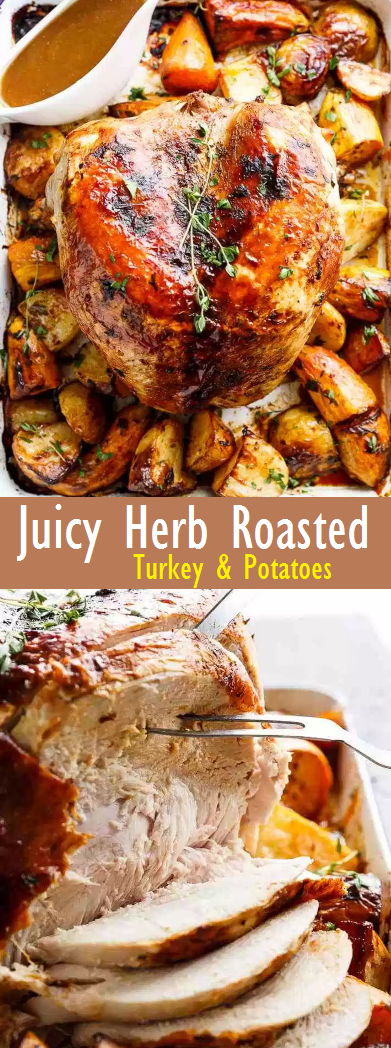 Best Recipe One Pan Juicy Herb Roasted Turkey & Potatoes With Gravy
