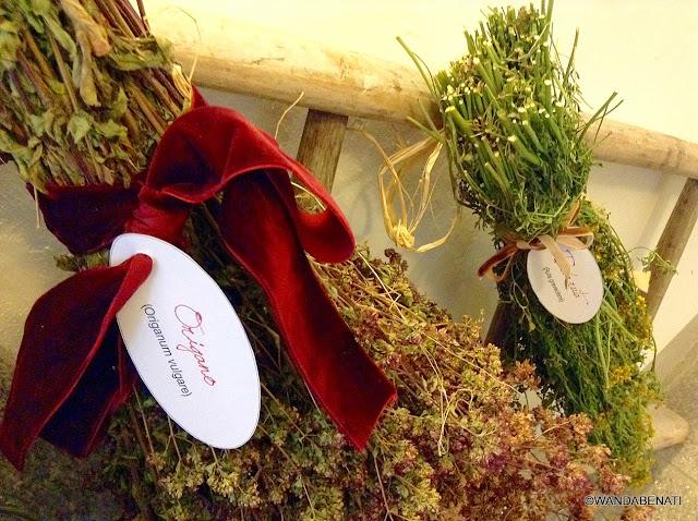 Mazzetti di erbe aromatiche