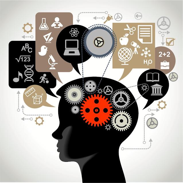 Мозговая деятельность. Механизмы и процессы.