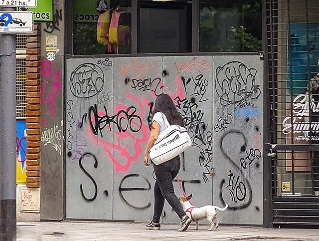 Mujer caminando por Avda. Santa Fe con un perrito.