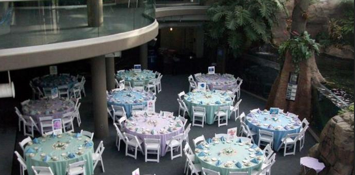 Pittsburgh Zoo Wedding Venues