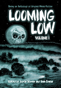Looming Low Volume I edited by Justin Steele and Sam Cowan