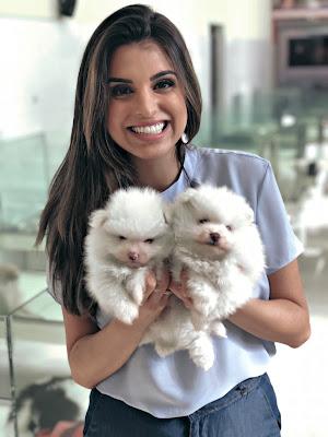 Apresentadora na maternidade de cães - Divulgação