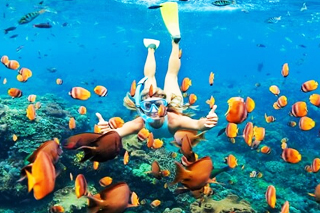Wall Point Snorkeling | Sunia Bali Tour